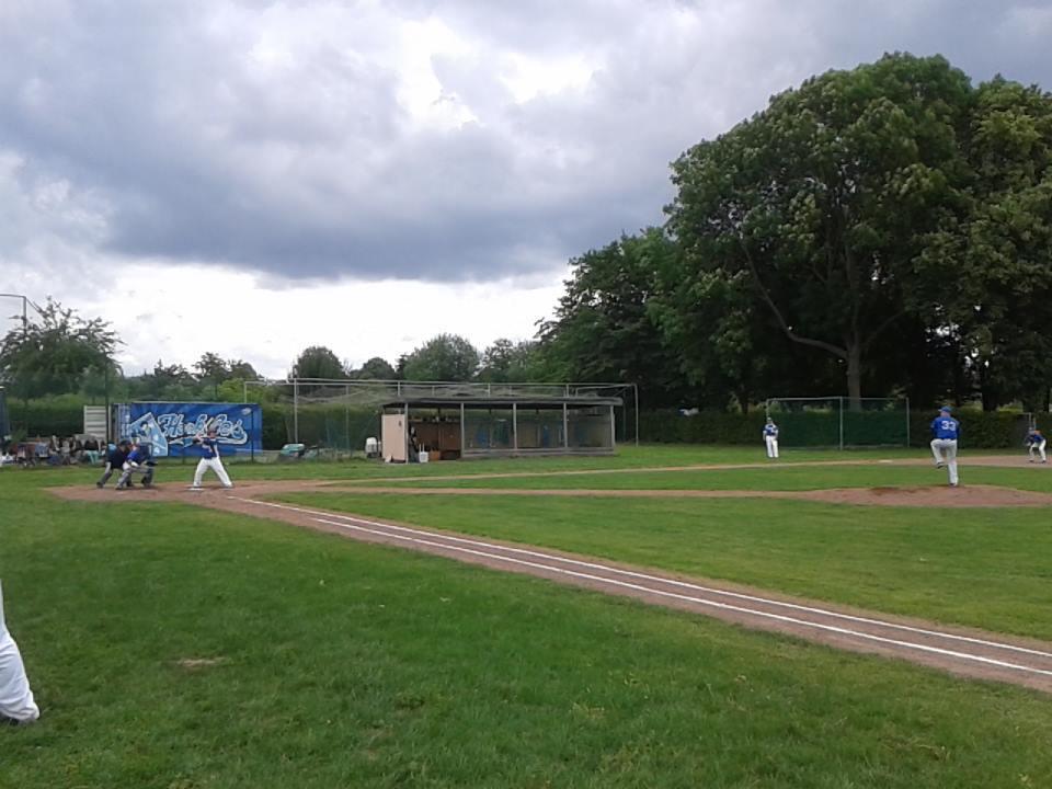Baseball Kassel